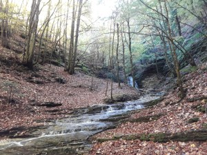 trekking monte cucco (9)