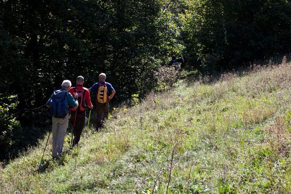 cammino francescano