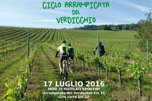 cicloarrampicata del verdicchio 2016